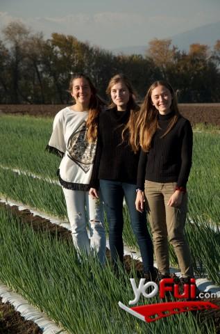 YoFui.com Universidad Católica y Vegus  Potencian Cultivos Orgánicos, Campos de Vegus  (7548)