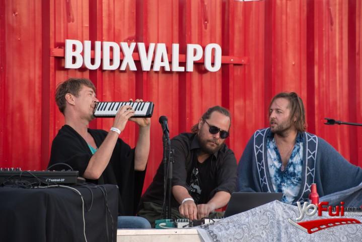 YoFui.com BudxValpo, Parque Cultural Valparaiso  (7966)
